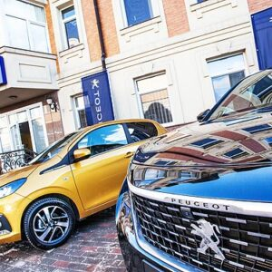 PEUGEOT и CITROEN увеличили продажи и долю рынка в Украине